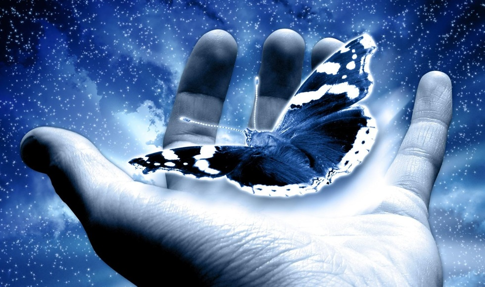 holding-a-blue-butterfly-preview